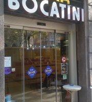 Bocatini