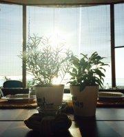 Sunrise Eatery & More