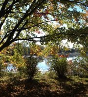 fun things to do in peterborough ontario