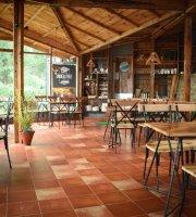 Cafe Under Tree