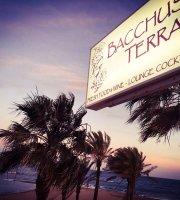 Bacchus' Terrace