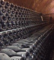 Tour dei vini e degustazioni