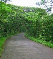 Goregaon East