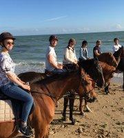 Tours a caballo