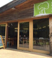 The Bluebell Cafe