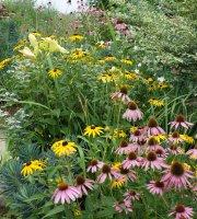 Garden Salon