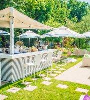 Rivo Restaurant & Lounge