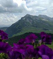 Altitude 1647