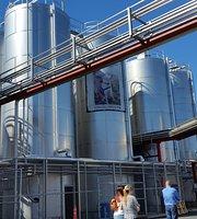 Laquanitas Brewing Company