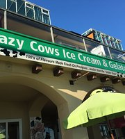 crazy cows ice cream and gelato