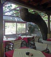 Sunrise Taverna & Bar