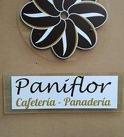 Paniflor