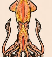 El Calamar Daurat