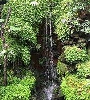 Chee Waa Garden