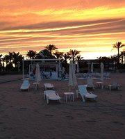 Dharma Playa