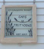 Cafe Triticeus