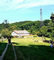 Gasthaus zum Agnesbrundl