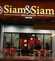 Siam & Siam Restaurant thai food