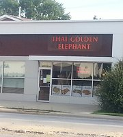 Thai Golden Elephant