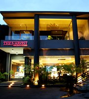 The Harvest Cakes Malang