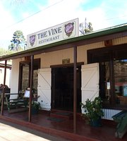 ‪THE VINE RESTAURANT‬