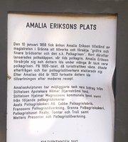 Hotel Amalias Hus
