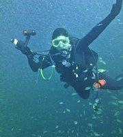 The Best South Carolina Scuba Snorkeling Activities With Photos Tripadvisor