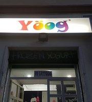Yoog Yogurteria