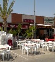 Palm Tree Bar