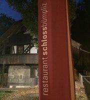Schloss-Bumpliz