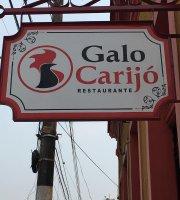 Galo Carijó