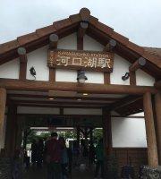 Gateway Fujiyama Kawaguchiko Station