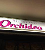 Ristorante Pizzeria Orchidea