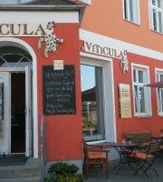 VITICULA Wein & Feinkost