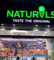 Natural Ice Creams