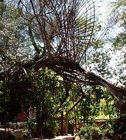 Past Times Tea Garden