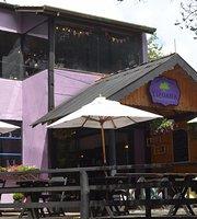 Casa Tipuana