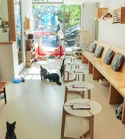 KitTea Cat Cafe
