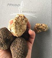 Pipavino marlene & martino