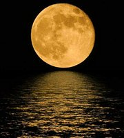 Moon On The Water