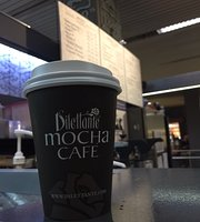 Dilettante Chocolates & Mocha Cafe