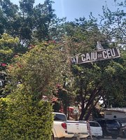 Caiu Do Ceu