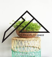 THONGDALAT.space