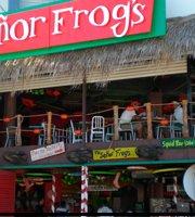 Senor Frog's Plaza Gali