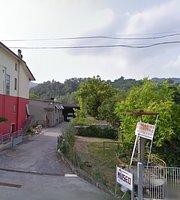 Museo Urbini