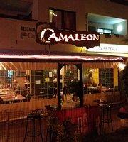 Restaurante El Camaleon