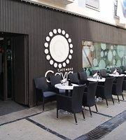 Cafe - Bar Gavia