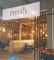Physis Greek Restaurant