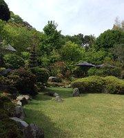 Marin's Garden