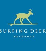 Surfing Deer